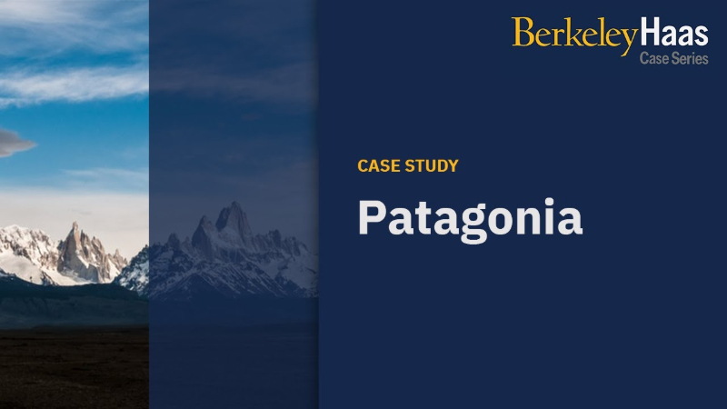 Patagonia - Driving Sustainable Innovation by Embracing Tensions